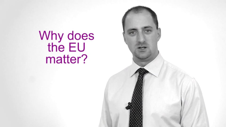 Why Does the European Union Matter?
